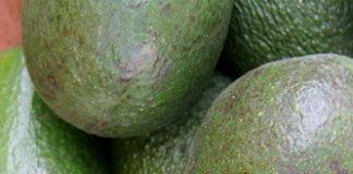 maschere per il viso con avocado