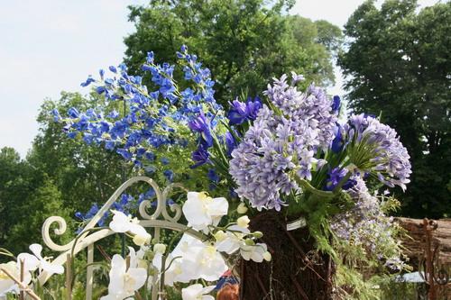 fiori da taglio