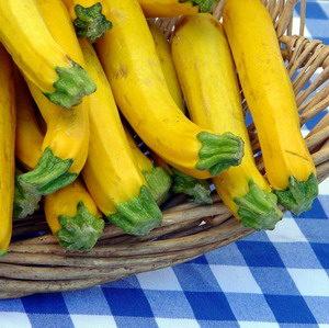2011/11/zucchine_03.jpg