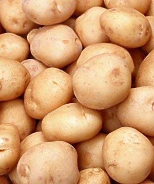 2012/01/patata.jpg