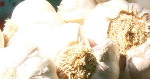2012/10/aglio_8a49a02b.jpg