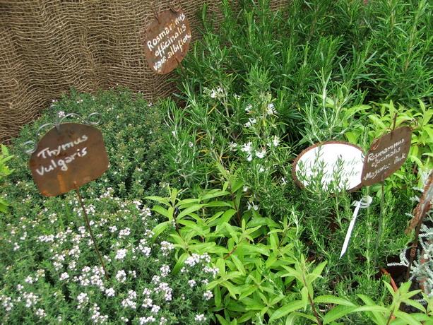 etichette per piante in metallo