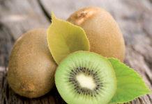 actinidia kiwi_coltivazione_5a9233dd.jpg