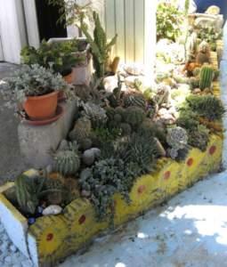 difendere le piante caldo