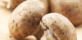 funghi prataiolo