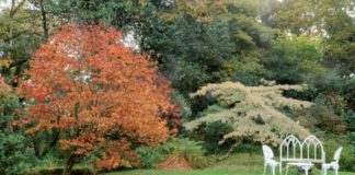 autunno in irlanda 2016/03/irlanda1_1c283593.jpg