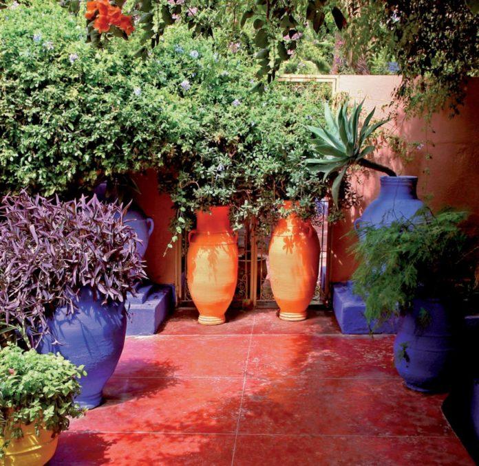 giardino mediterraneo ambientazione
