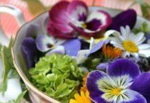 fiori commestibili fiori-da-mangiare2-640x480_web_228613d8.jpg