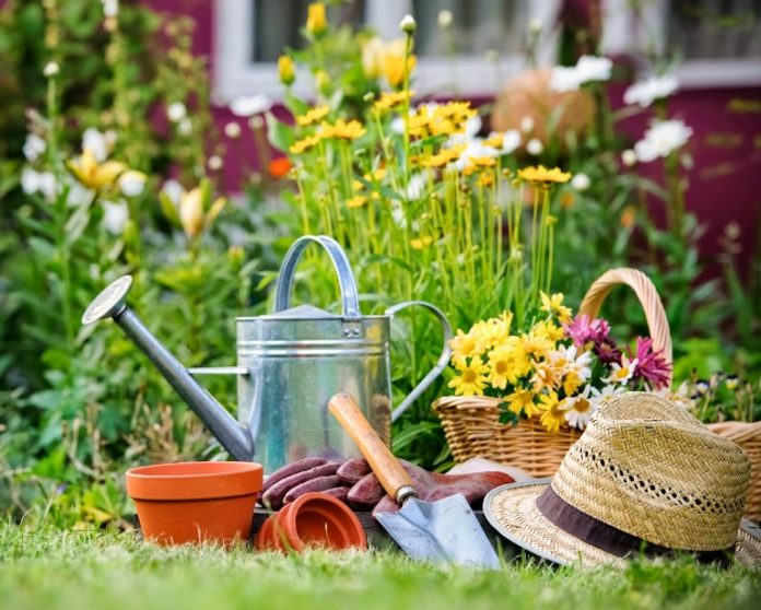 2017/07/gardening_web_7ddadf2f.jpg