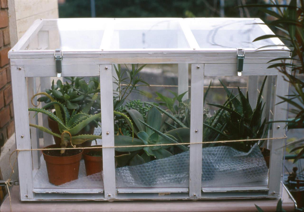 Piccole Serre Da Casa come scegliere la serra da balcone - passione in verde