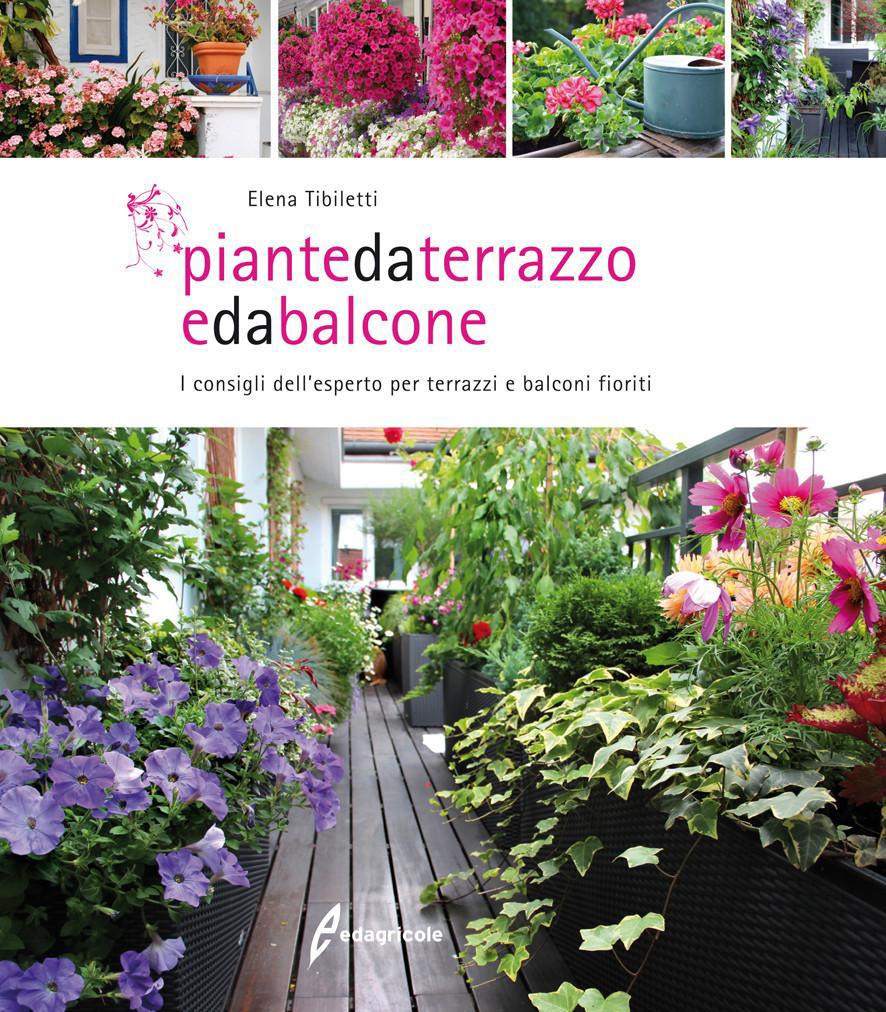 Piante Rustiche Da Balcone piante da balcone: come proteggerle in inverno - passione in
