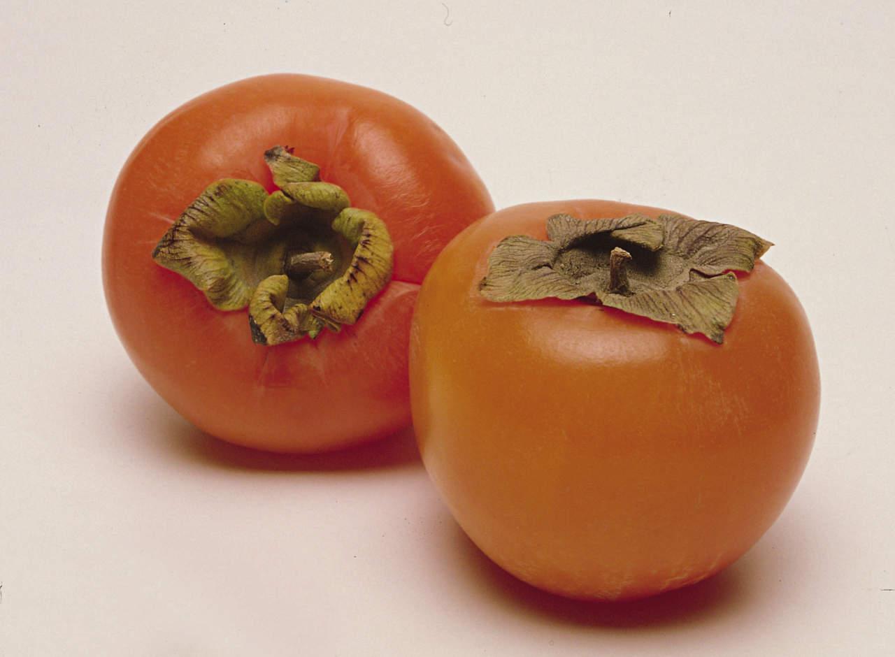 Calendario Trattamenti Frutteto.Come Curare Il Frutteto In Autunno E Inverno Passione In Verde