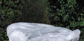 protezioni piante esterno