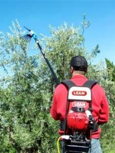 Brucatore o pettine per raccolta olive di Lisam