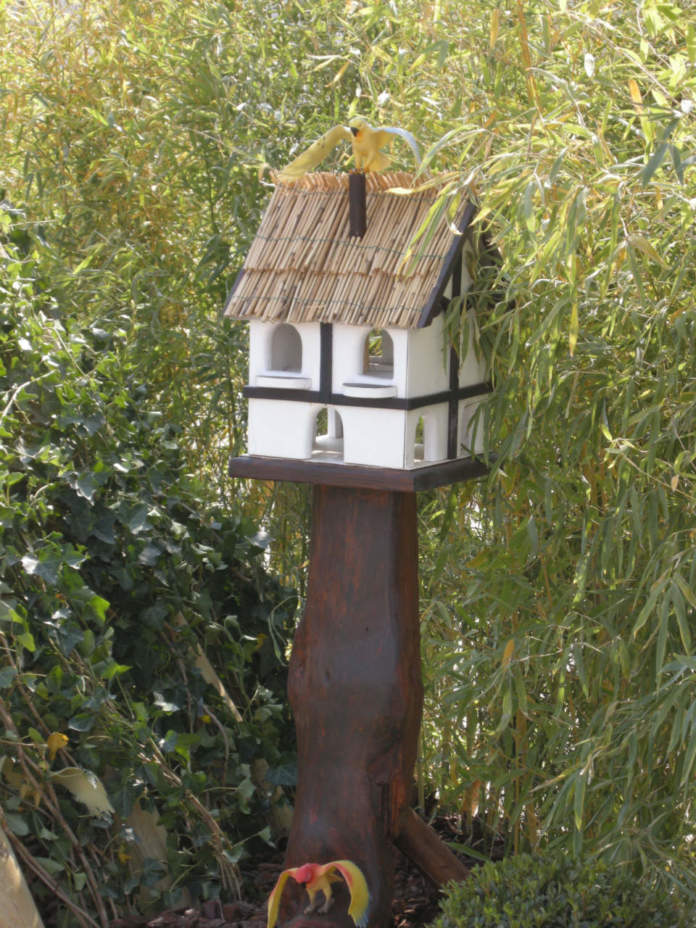 mangiatoia uccellini