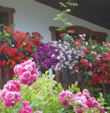 lavori nel giardino in giardino in luglio