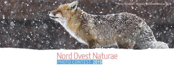 concorso fotografico NordOvest Naturae Photo contest 2019