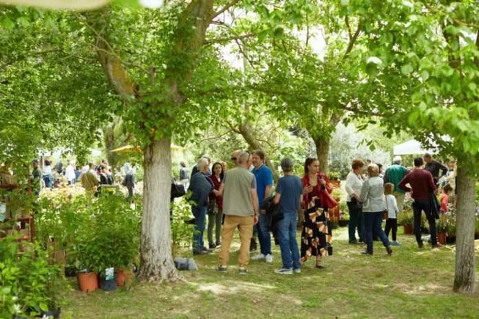 verdi e contenti al Centro Botanico Moutan