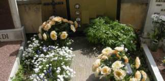 piante sulla tomba