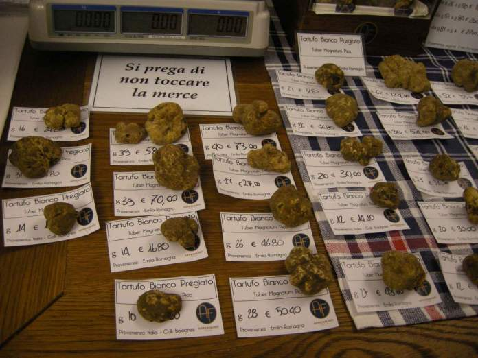 tartufi, tartufo bianco, piante afrodisiache