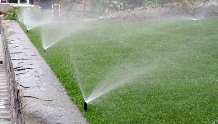 syringing prato irrigazione