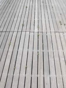 Pavimentazioni doghe legno
