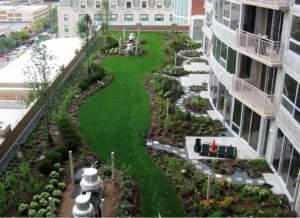 tetto verde