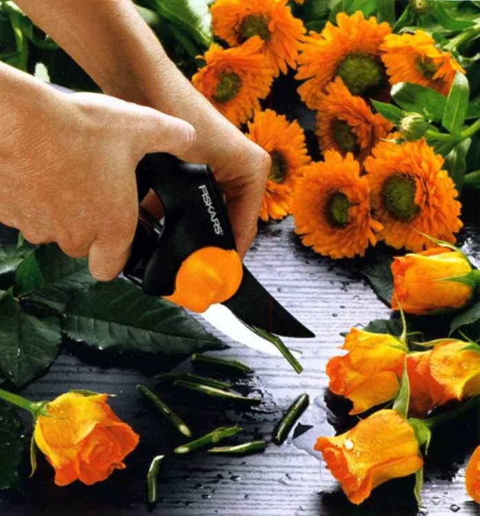 attrezzi giardino pulizia