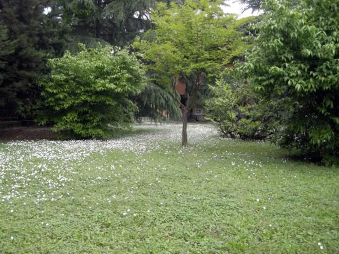 giardino preesistente