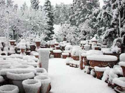 terracotta gelo neve