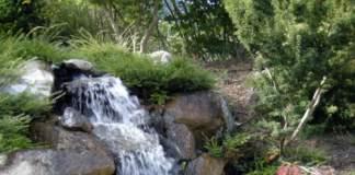 biolago biopiscina cascata