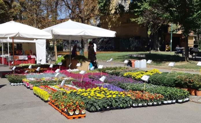 mostra mercato giardinaggio